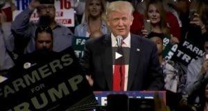 Trump rally fresno 8-27-16