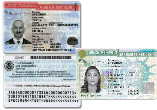 Immigration documents - EAD and green card