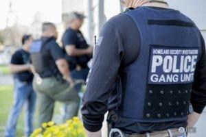 ICE arrest of gang members