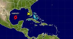 Harvey hurricane chart