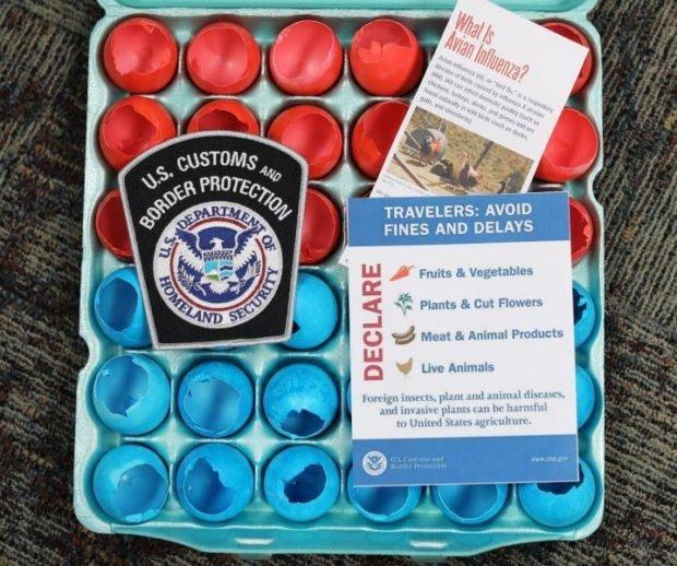 Photo of CBP Advises Traveling Public on Easter Egg Regulations
