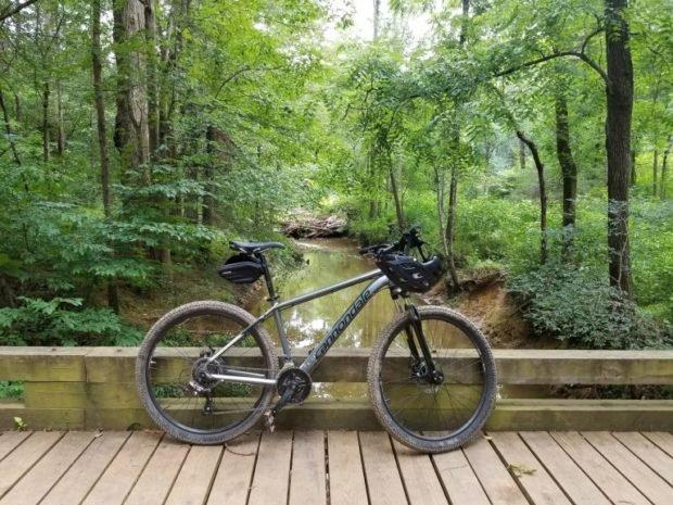 Photo of My Mountain Biking Restart – At 50