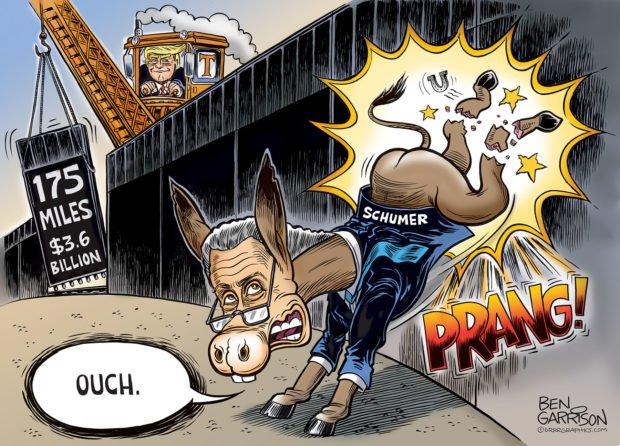 Photo of Trump's Wall – Grrr Graphics – Ben Garrison Cartoon