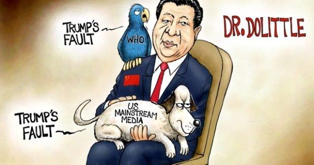 Photo of Stupid Pet Tricks – A.F. Branco Cartoon