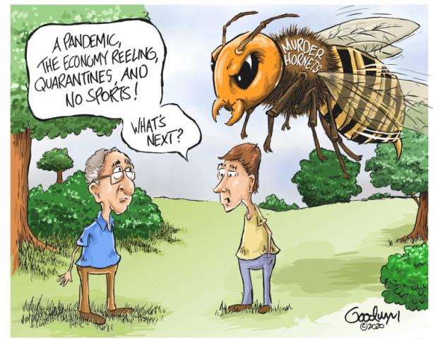 Photo of What's Next? – Al Goodwyn Cartoon