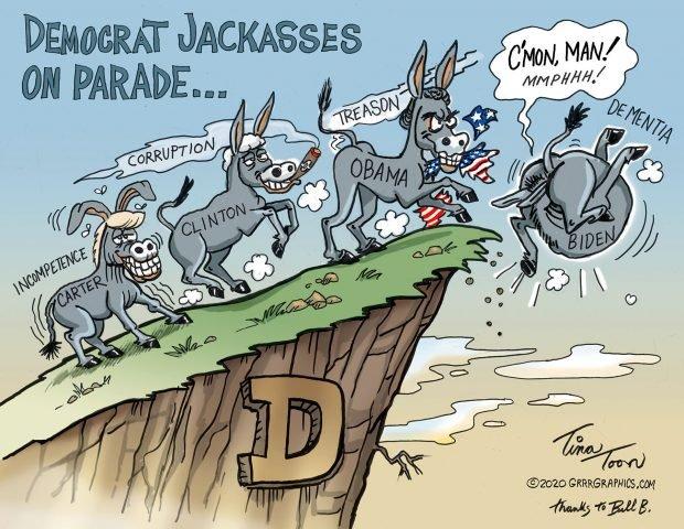 Photo of Democrat Donkey Drop – Tina Toon