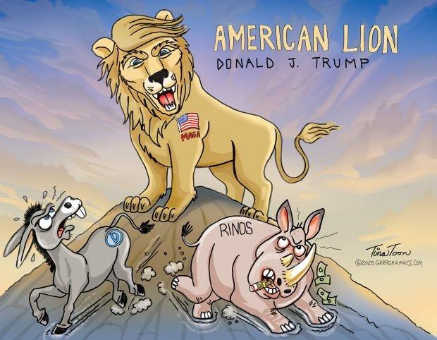 Photo of American Lion – Tina Toon